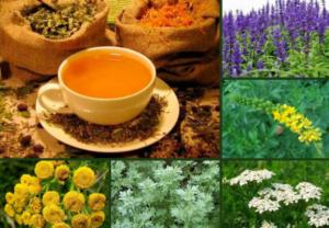 Компоненты травяного чая
