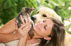 Заразится глистами можно через домашних животных
