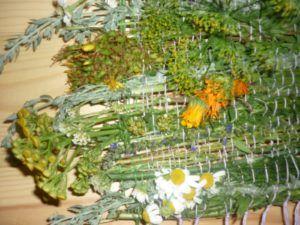 Лекарственные сборы растений