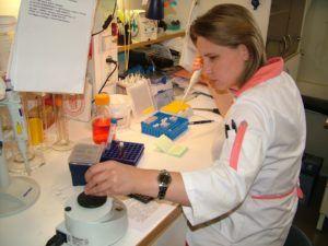 Иммуноферментное исследование биоматериала