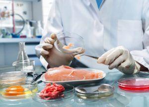 Экспертиза мясных продуктов