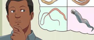 Симптомы ленточных червей у человека