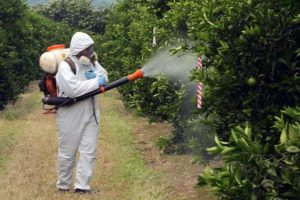 Применение остаточных инсектицидов для обработки участков